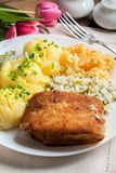 Fried fish fillet of cod. Royalty Free Stock Image