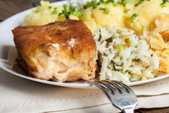 Fried fish fillet of cod. Stock Images