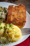 Fried fish fillet of cod. Royalty Free Stock Photos
