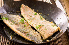 Fried Fish Fillet fried in Pan Stock Image