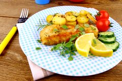 Fried fish fillet with rosemary potatoes, vegetables Royalty Free Stock Images