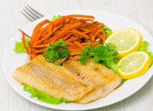 Fried fish fillet with vegetables Stock Photography