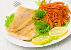 Fried fish fillet with vegetables Stock Images