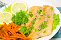 Fried fish fillet with vegetables Royalty Free Stock Image