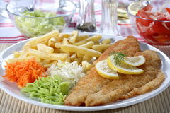 Fried fish fillets Stock Photos