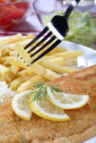 Fried fish fillets Royalty Free Stock Image