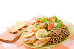 Fried fish fillets and fresh vegetables Royalty Free Stock Images