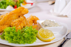 Fried fish fillets with savory tartare sauce Royalty Free Stock Images