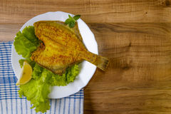 Fried Fish flounder on white plate with lettuce and lemon Stock Image