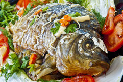 Fried fish with fresh herbs, tomatoes. Royalty Free Stock Image