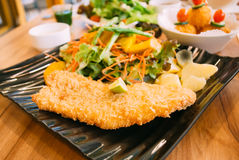 Fried fish with fresh salad. On plate Royalty Free Stock Photo