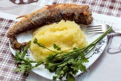 Fried fish. Stock Image
