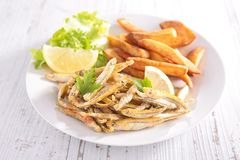 Fried fish, fries and salad Stock Photo