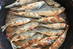 Fried fish in a frying pan closeup, culinary background Stock Photography