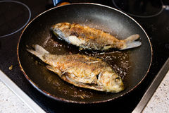 Fried fish in a frying pan on the cooker Stock Photo