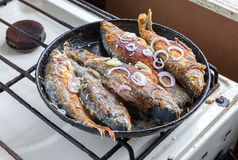Fried fish on the frying pan. Simple food Stock Images