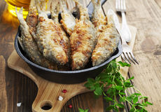 Fried fish in a frying pan Stock Photography