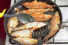 Fried fish on frying pan Royalty Free Stock Photography