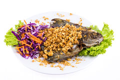 Fried fish with garlic on white plate Royalty Free Stock Images