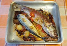 Fried fish on griddle Stock Images