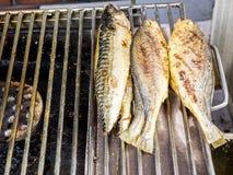 Fried fish on the grill at the Gwangjang Market. Seoul, South Korea