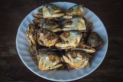 Fried fish heads for a simple meal of rural people stock photography