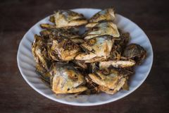 Fried fish heads for a simple meal stock photography