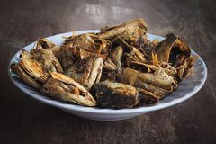Fried fish heads for a simple meal of rural people royalty free stock images