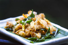 Fried fish with herbs Royalty Free Stock Photo