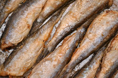 Fried fish herring, Fried fish in a frying pan. Royalty Free Stock Photo