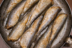 Fried fish herring, Fried fish in a frying pan. Royalty Free Stock Photography