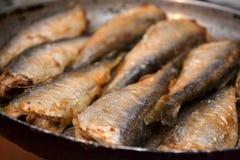 Fried fish herring. Stock Photography