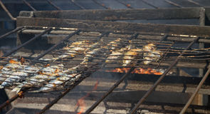 Fried fish on a hot coal. Royalty Free Stock Photography
