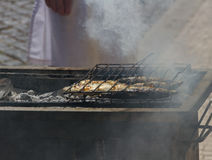 Fried fish on a hot coal. Royalty Free Stock Image