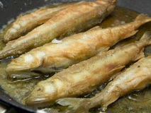 Fried Fish in a Hot Pan Royalty Free Stock Image