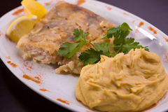 Fried fish and hummus Stock Images