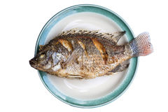 Fried fish isolated background Royalty Free Stock Image