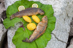 Fried fish with lemon and polenta on a leaf Royalty Free Stock Photography
