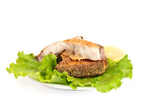 Fried fish with lettuce Stock Image