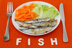 Fried fish with lettuce and carrot Royalty Free Stock Photography