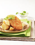 Fried fish with new potatoes Stock Images