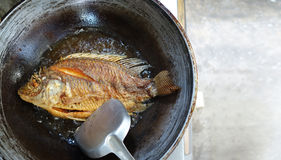 Fried fish in pan with boil oil. Big fish fried in a pan and hot oil royalty free stock image