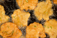 Fried fish patty Stock Photography