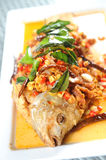 Fried fish on a plat Royalty Free Stock Image