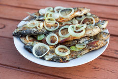 Fried fish on a plate Royalty Free Stock Photo