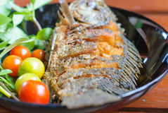 Fried fish in plate Royalty Free Stock Images