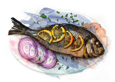 Fried fish on a plate with shallots and lemon slices, sketch. Fried fish on a white plate with shallots and lemon slices, sketch Royalty Free Stock Images