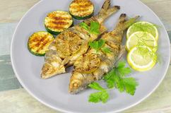 Fried fish on plate Stock Image