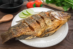 Fried fish on plate with vegetables and pan Stock Photos