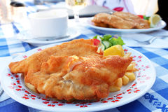 Fried fish with potato on the plate Stock Photography